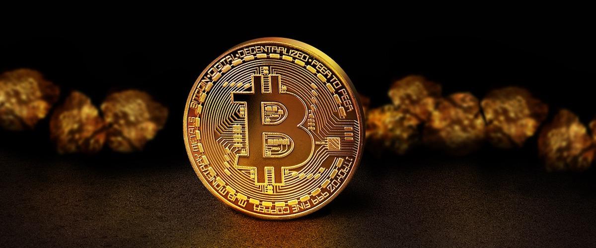 Bitcoin DNA Growth