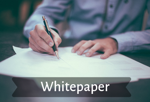 Whitepaper: Why Does Your Organization Need One?